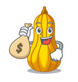 with money bag squash slices in a cartoon bowl vector image