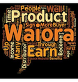 Why Become A Waiora Distributor text background vector image vector image