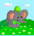 cartoon elephant collects flowers in the meadow vector image vector image