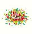 fashionable autumn vector image