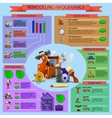 Remodeling and renovation works infographics vector image vector image