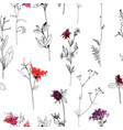 seamless pattern with drawing herbs and flowers vector image vector image
