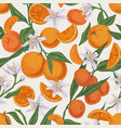 seamless realistic citrus pattern with whole vector image