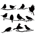 Silhouettes bird on a branch vector image vector image