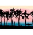 sunset on beach persian gulf vector image