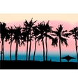 Sunset on the beach of Persian Gulf vector image