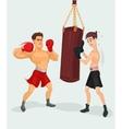 a boxer vector image