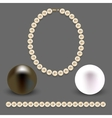 A collection of objects made of pearls on gray vector image
