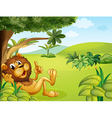 A lion taking a rest vector image vector image