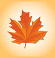 autumn leaf autumn maple leaf isolated on a white vector image vector image
