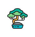 bonsai tree flat color line icon vector image vector image