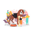 dog care supplies and accessories vector image