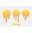 drip honey syrup set isolated white transparent vector image vector image