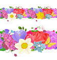 fashion collection horizontal borders from lovely vector image vector image