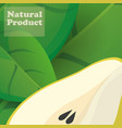 pear natural product poster design vector image