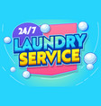 professional laundry service typography banner vector image
