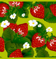seamless pattern with fresh red strawberries vector image