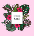 summer sale badge over tropical leaves on a pink vector image vector image