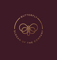 butterfly logo beautiful decorative vector image vector image