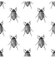 hand drawn seamless pattern with maybugs vector image vector image