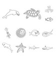 isolated object of sea and animal sign collection vector image vector image
