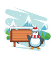 penguin and wooden sign vector image vector image