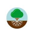 tree with roots trunk and crown a vector image