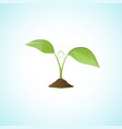 Young plant isolated vector image vector image