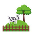 cow fence farm vector image vector image