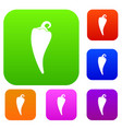 hot chili pepper set collection vector image vector image