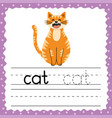 learning to write words flashcard three letters vector image