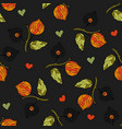 seamless autumn pattern with physalis vector image