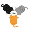 three kittens looking at mouse back and tail top vector image vector image