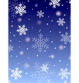 Winter design vector image vector image