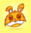 head rabbit vector image