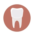 White tooth icon cartoon style vector image