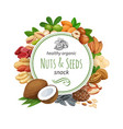 banner template with nuts and seeds vector image vector image