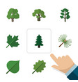 flat icon ecology set of rosemary forest oaken vector image