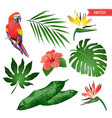 set of tropical flowers leaves and bird vector image