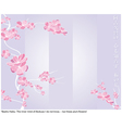 spring flower pattern with japanese haiku vector image vector image