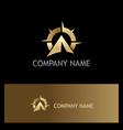 star navigation gold logo vector image vector image