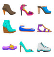 woman shoes set in cartoon style vector image vector image