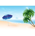Summer beach with palm trees vector image