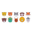 cute animals asian manga animal avatar collection vector image vector image