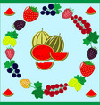 different kinds of berries vector image vector image