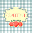 grapefruit label on squared background vector image vector image