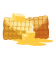 grilled corn icon vector image