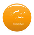 helicobacter pylory icon orange vector image vector image