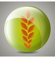 Leaf and leaves ecology graphic