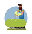man takes care of a bush vector image
